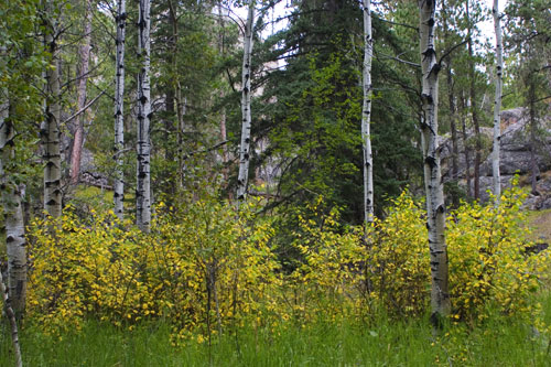 09-09-060-hike.jpg