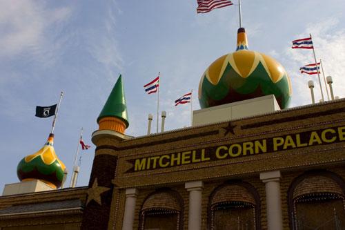09-11-corn-ws.jpg
