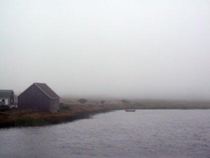 Kingsburg.mist.jpg