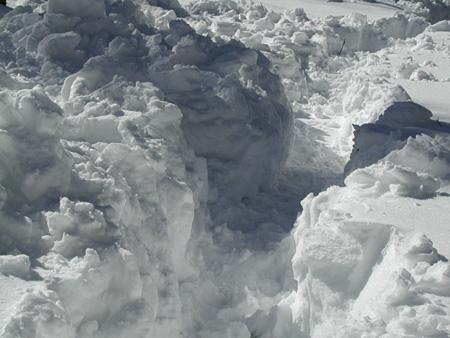 Snow2.25.04.jpg