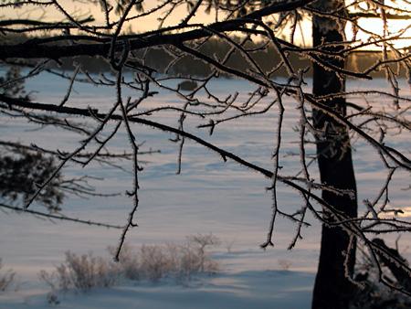 Snow3.2.26.04.jpg