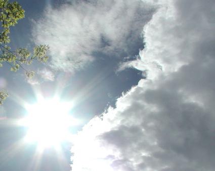 Sun6.11.04.jpg