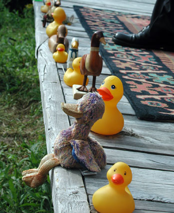 Wedding-ducks2.jpg