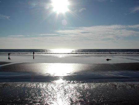 beach-la.jpg