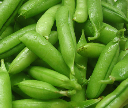 garden-peas-aug-04.jpg