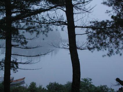 mist-7.04.jpg
