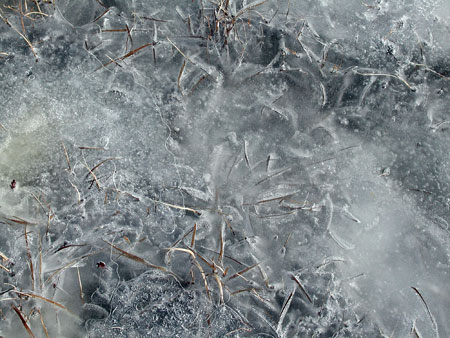 Duncans-Cove-Ice-2.jpg