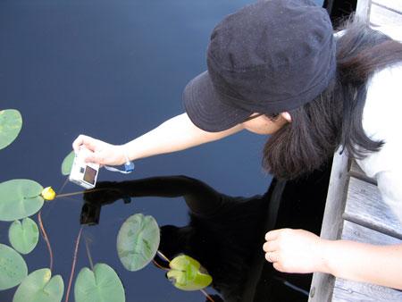 Yoko-pix.jpg