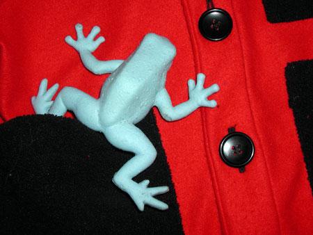 frog-d.jpg