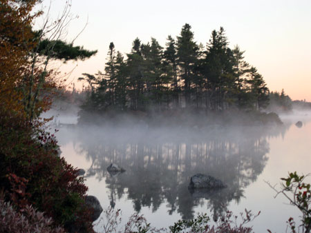 mist-oct.jpg