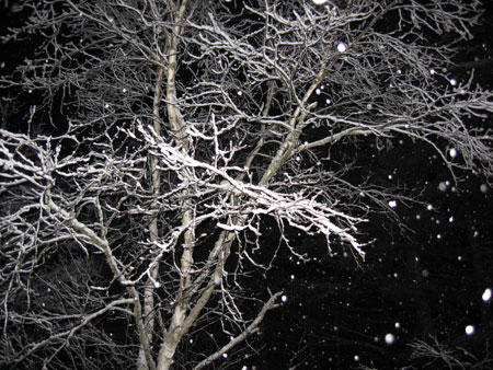 snow-night.jpg