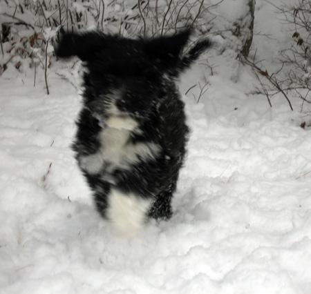 Lila-snow-3.jpg