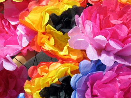 Nishuane-flowers.jpg