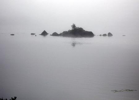 fog1-7.24.06.jpg