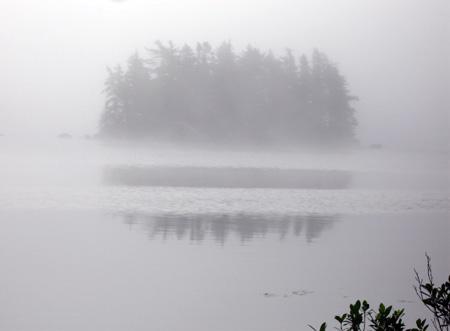 fog2-7.24.06.jpg