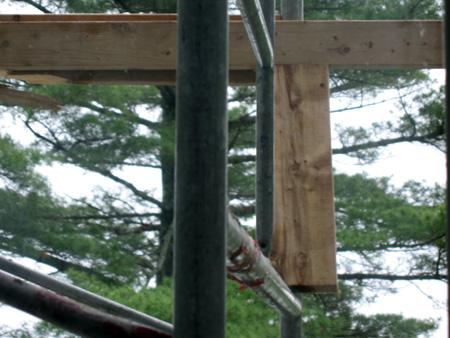 scaffold-2.jpg