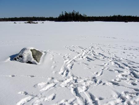 lake-2.11.07.jpg