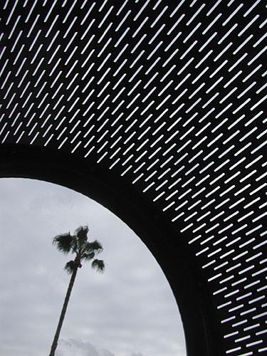0220lone-palm.jpg