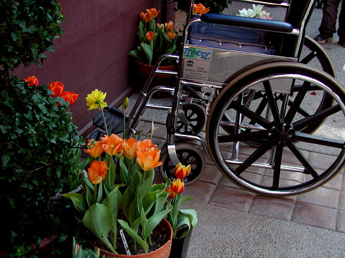 0313wheelchair-flowers.jpg