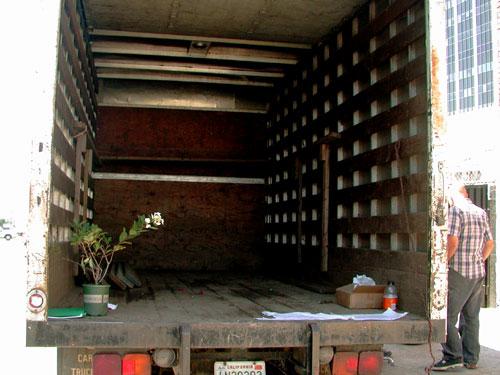 truck-back.jpg
