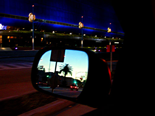 rear-mirror-palm.jpg