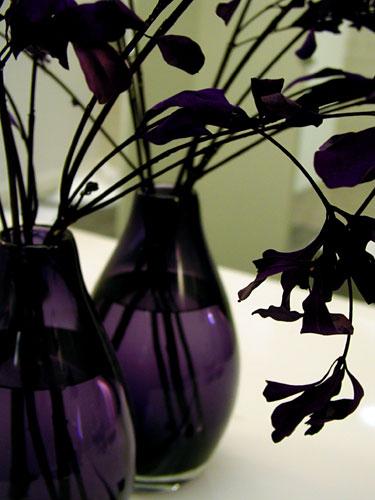 glass-vase.jpg