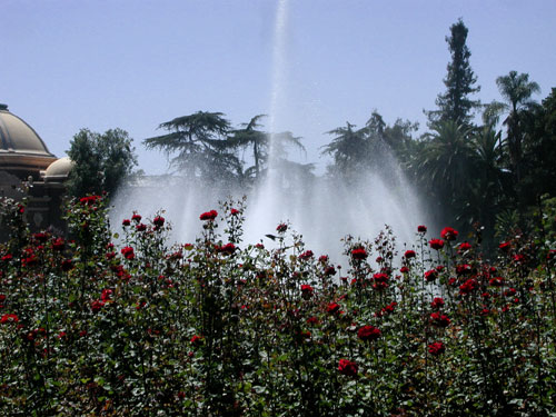 rose-fountain-WS.jpg