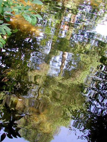 monet-water.jpg